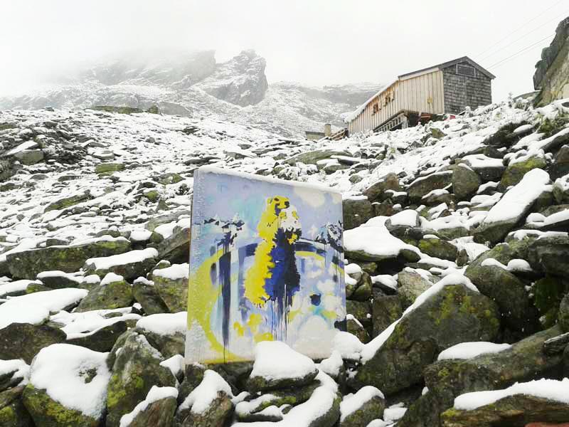 © Irene Mueller, Superwildvision Alpen