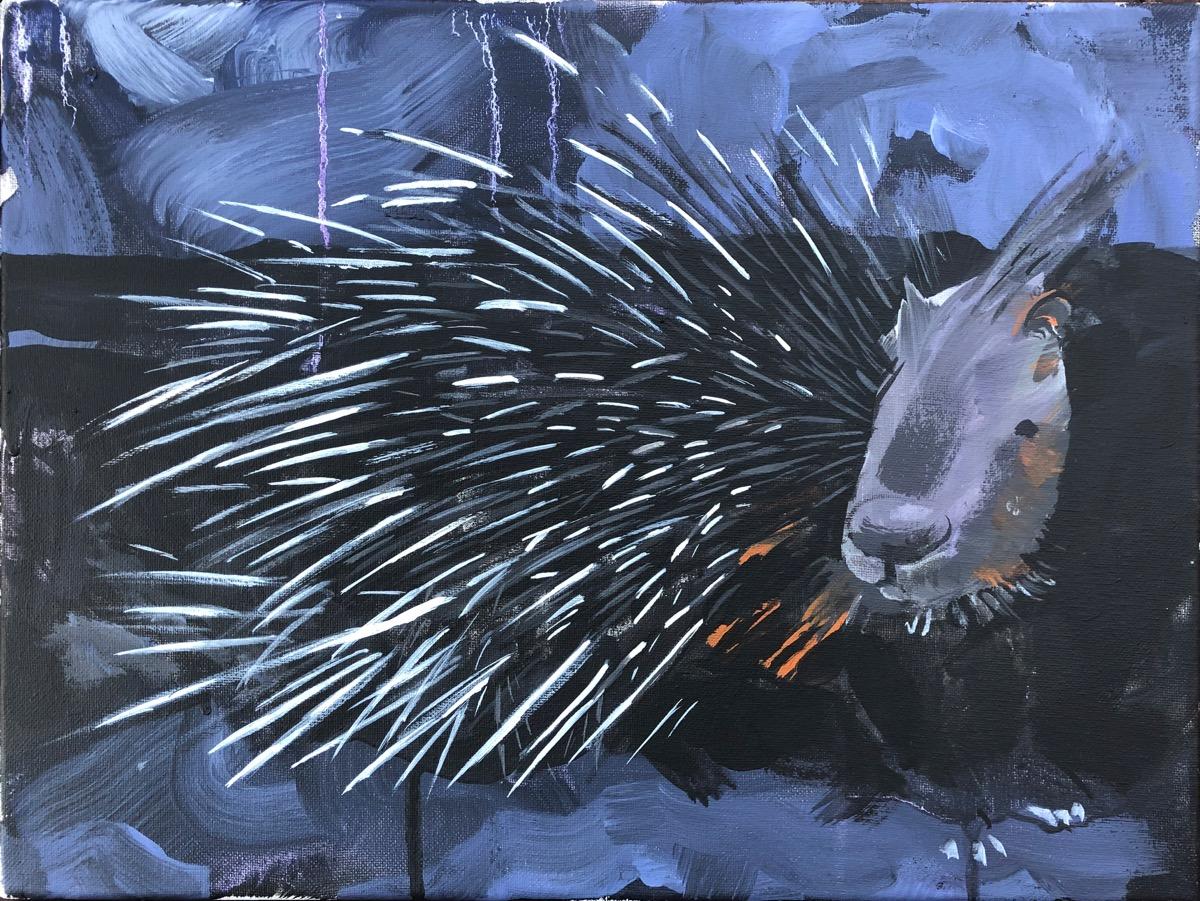 SUPERWILDVISION Namibia, ein Kunstprojekt von Irene Mueller, Gemaelde Stachelschwein zu sehen.