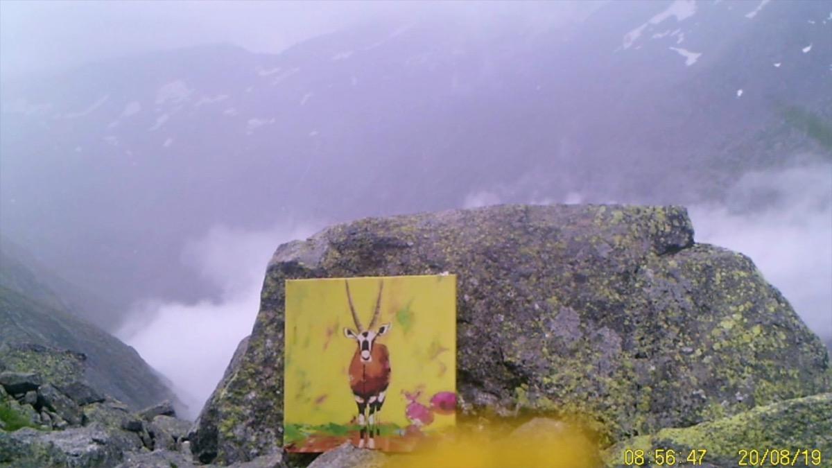 Filmstill SUPERWILDVISION Alpen 2019, Oesterreich, Kunstprojekt von Irene Mueller, Gemaelde Antilope, Nebel