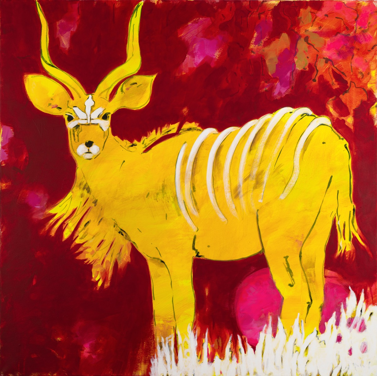 Filmstill SUPERWILDVISION Namibia 2020, Afrika, Kunstprojekt von Irene Mueller, Tier Gemaelde Kudu Antilope, Maske